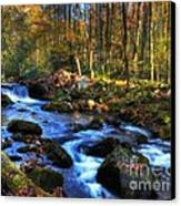 A Smoky Mountain Autumn Canvas Print