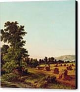 A Surrey Cornfield Canvas Print by Walter Williams