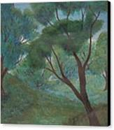 A Thought Of Summer Canvas Print by Robert Meszaros