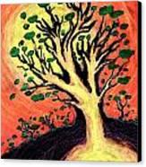 A Tree Is Born Canvas Print by David Condry