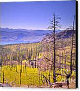 A View From Okanagan Mountain Canvas Print