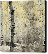 A Wisp Of Gold Canvas Print