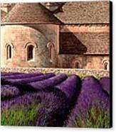 Abbey Lavender Canvas Print