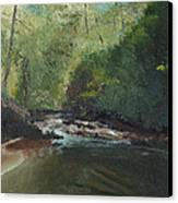 Above Bald River Falls Canvas Print by William Killen