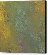 Abstract 5 Canvas Print by Corina Bishop
