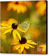 Abundance Canvas Print by Lois Bryan