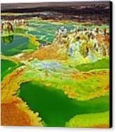 Acid Lakes Of Dallol Volcano Canvas Print by Liudmila Di