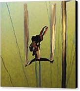 Aerial Acrobatic Artistry2  Canvas Print by Anne Mott