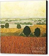 After Harvest Canvas Print