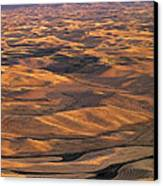 After Harvest From Steptoe Butte Canvas Print by Doug Davidson