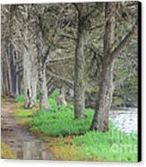 After High Tide Canvas Print
