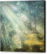 Afternoon Delight Canvas Print by William Schmid