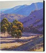 Afternoon Shadows Canvas Print by Graham Gercken