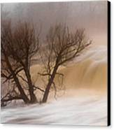 Against The Current Canvas Print by Mary Amerman