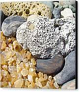 Agate Rock Garden Design Art Prints Coral Petrified Wood Canvas Print by Baslee Troutman