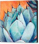 Agave 1 Canvas Print by Athena  Mantle