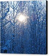 Alaska Sunrise Illuminating Through Birches And Willows Canvas Print by Elizabeth Stedman