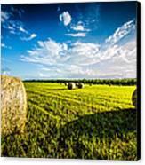 All American Hay Bales Canvas Print by David Morefield