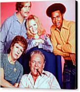 All In The Family  Canvas Print