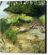 Allequash Creek On Trout Lake Canvas Print by Helen Klebesadel