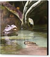 Alligator - National Aquarium In Baltimore Md - 12121 Canvas Print