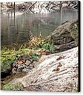 Along The Black Water River Canvas Print