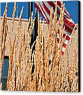 Amber Waves Of Grain And Flag Canvas Print