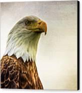 American Bald Eagle With Flag Canvas Print by Natasha Bishop