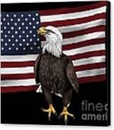 American Eagle Canvas Print