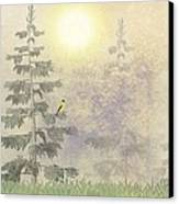 American Goldfinch Morning Mist  Canvas Print by David Dehner