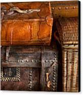 Americana - Emotional Baggage  Canvas Print by Mike Savad