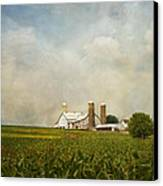 Amish Farmland Canvas Print by Kim Hojnacki