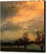 And They Flew Away Canvas Print