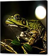 And This Frog Can Sing Canvas Print by Bob Orsillo