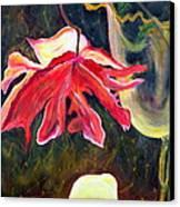 Anemone Me Canvas Print by Jolanta Anna Karolska