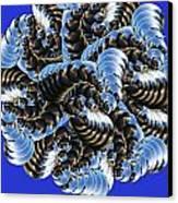 Anemone Canvas Print by Soumya Bouchachi