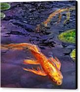 Animal - Fish - There's Something About Koi  Canvas Print by Mike Savad