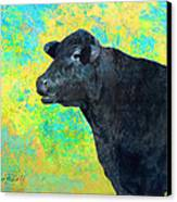 Animals Cow Black Angus  Canvas Print