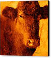 animals- cows- Brown Cow Canvas Print by Ann Powell