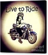 Anime Biker-live To Ride Canvas Print