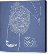 Anisogonium Cordifolium Canvas Print
