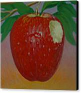Apple 3 In A Series Of 3 Canvas Print