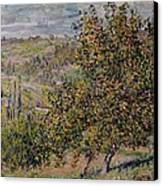 Apple Blossom Canvas Print by Claude Monet