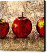Apple Canvas Print by Bob Orsillo