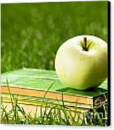 Apple On Pile Of Books On Grass Canvas Print by Michal Bednarek