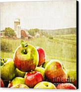 Apple Picking Time Canvas Print by Edward Fielding
