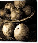 Apple Still Life Black And White Canvas Print by Edward Fielding