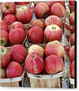 Apples In Small Baskets Canvas Print