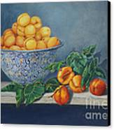 Apricots And Peaches Canvas Print by Enzie Shahmiri
