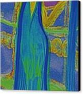 Aquarius By Jrr Canvas Print by First Star Art